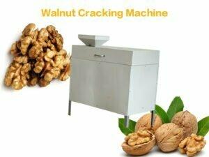 walnut pecan cracking machine
