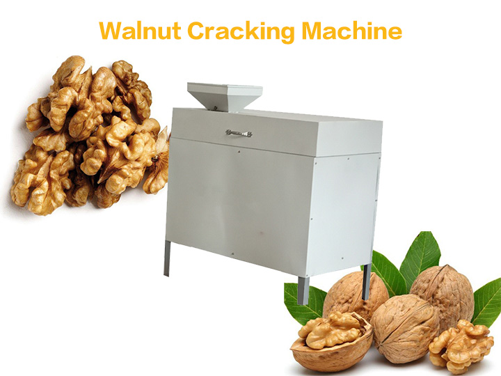 walnut pecan cracking machine