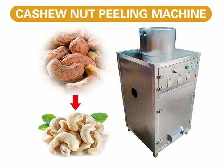 cashew kernel peeling machine