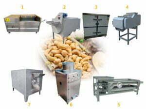 cashew nut processing machine cost