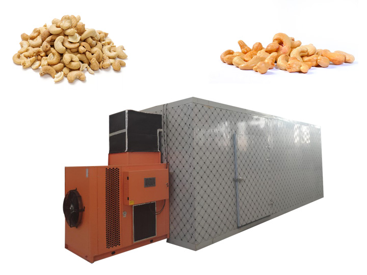 box type cashew kernel dryer machine