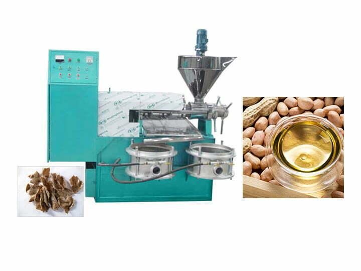 automtic screw oil press machine
