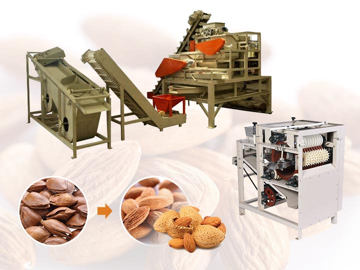 Almond Shelling Production Line